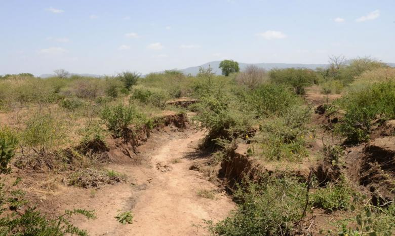 Gulley caused by erosion in Mwingi, Kenya.