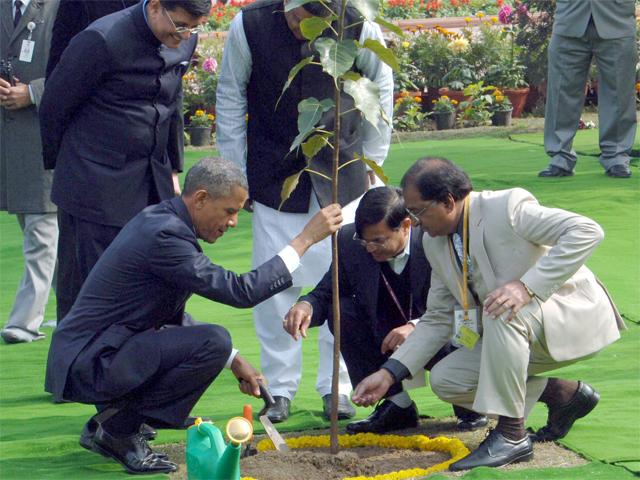US President Obama plants a Bo-tree in India